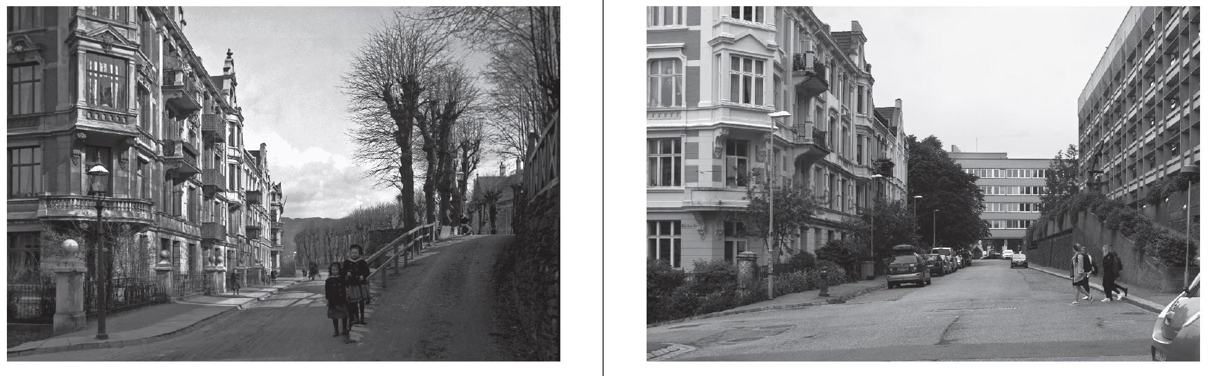 Bergen Sample3